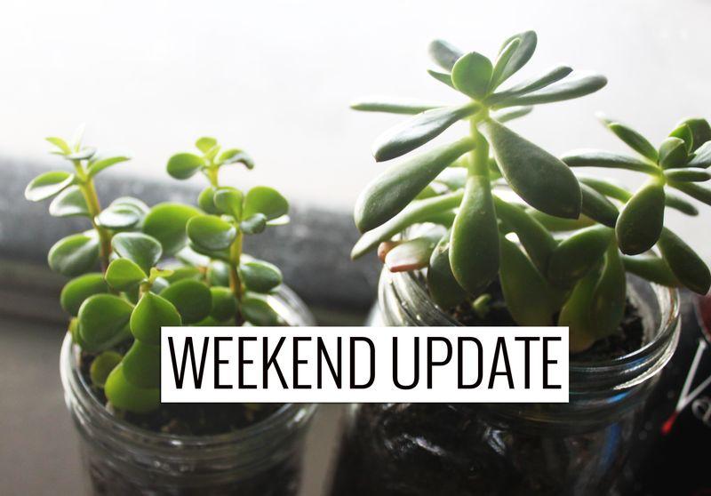 Wu_plants_IMG_7598